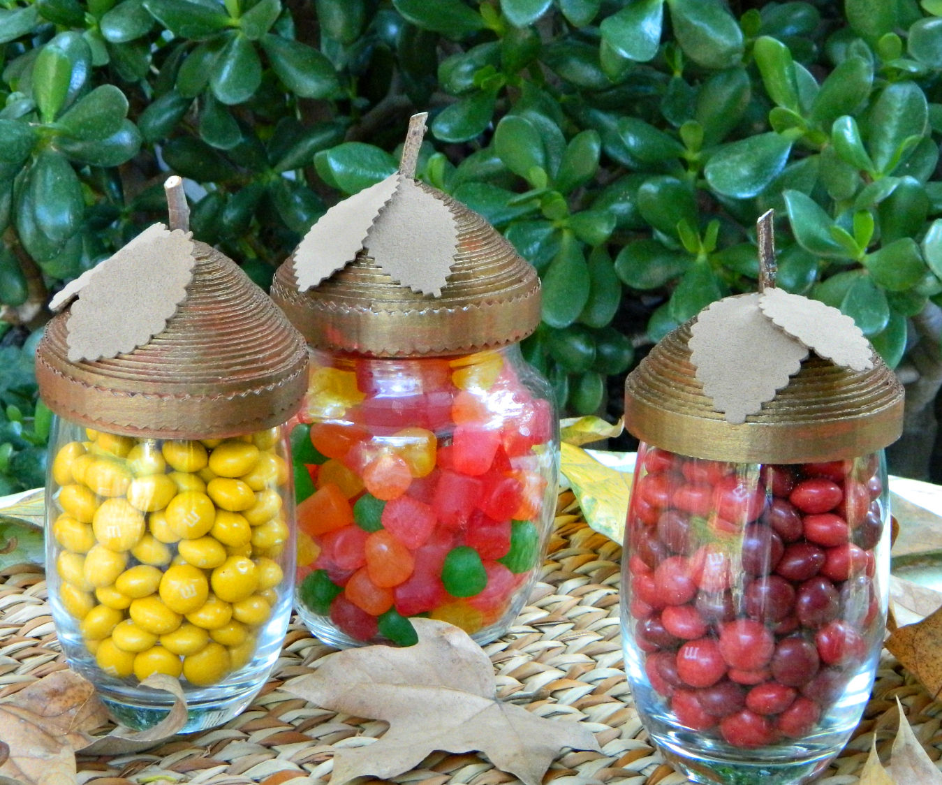Acorn Candy Dishes