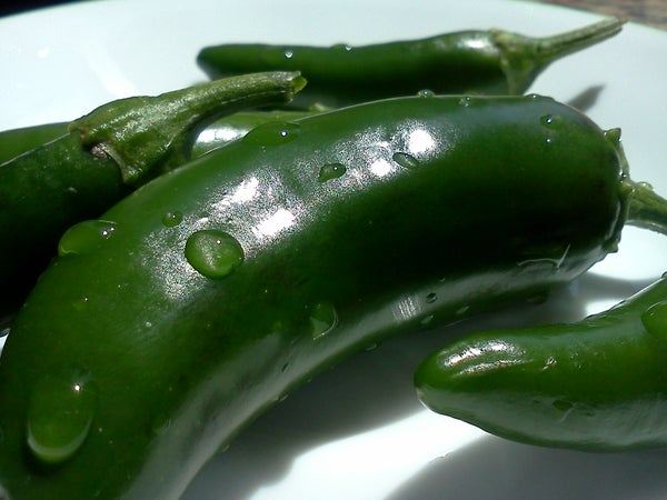 Quick and Easy Pickled Jalapenos
