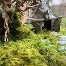 Mini Relaxation Garden