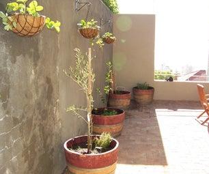 Wine Barrel Organic Food Garden