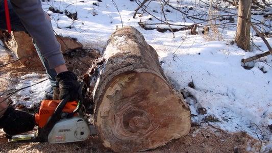 Find Your Stump