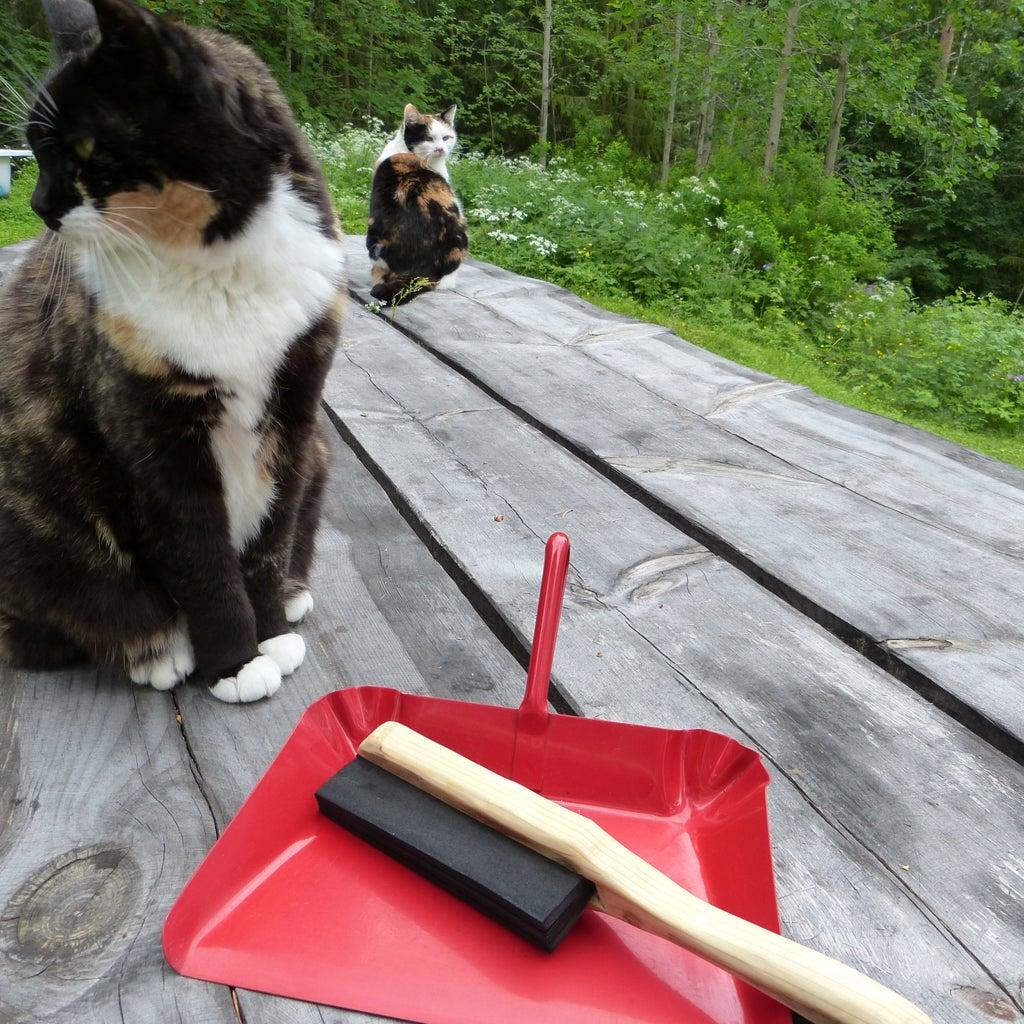 CAT PIC FRENZY