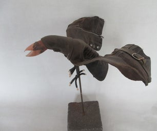 Schubert the Shoe Bird