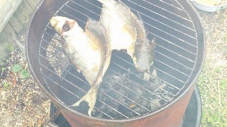 How to clean and smoke a fish with hot smoke method