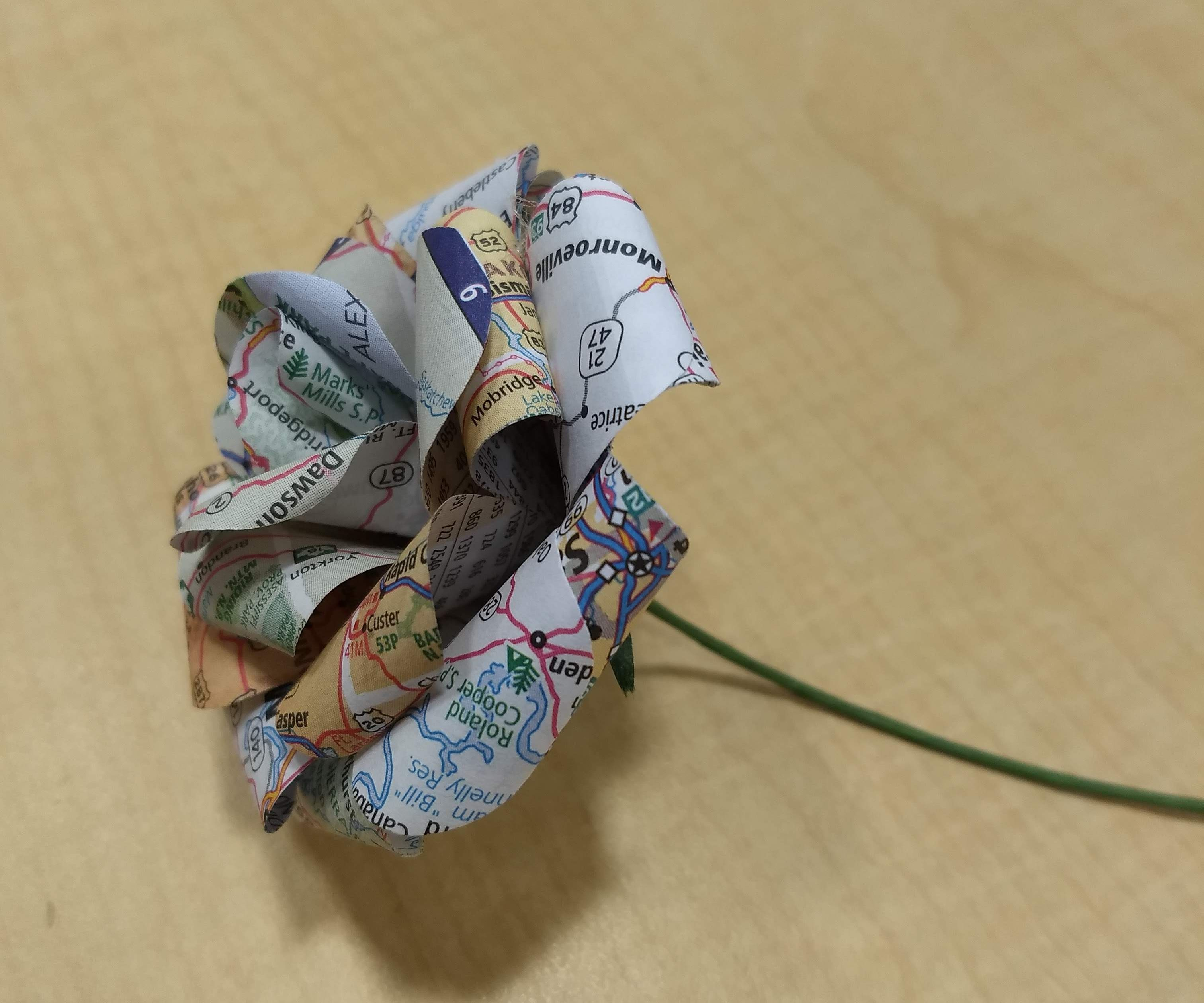Wanderlust Paper Roses