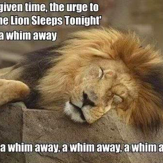 A Whim Away.png