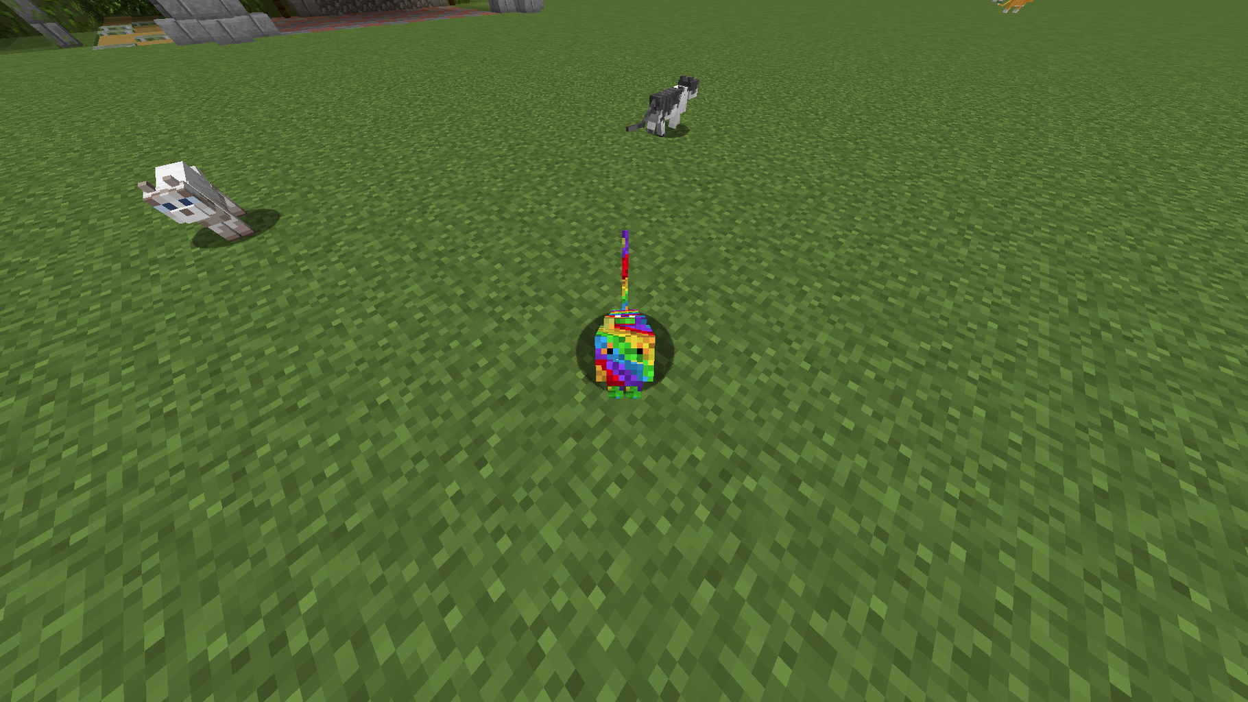 How to Make a Minecraft Rainbow Cat Mob Skin