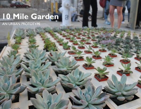 10 Mile Garden