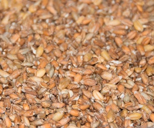 Homemade Sprouted Whole Grains