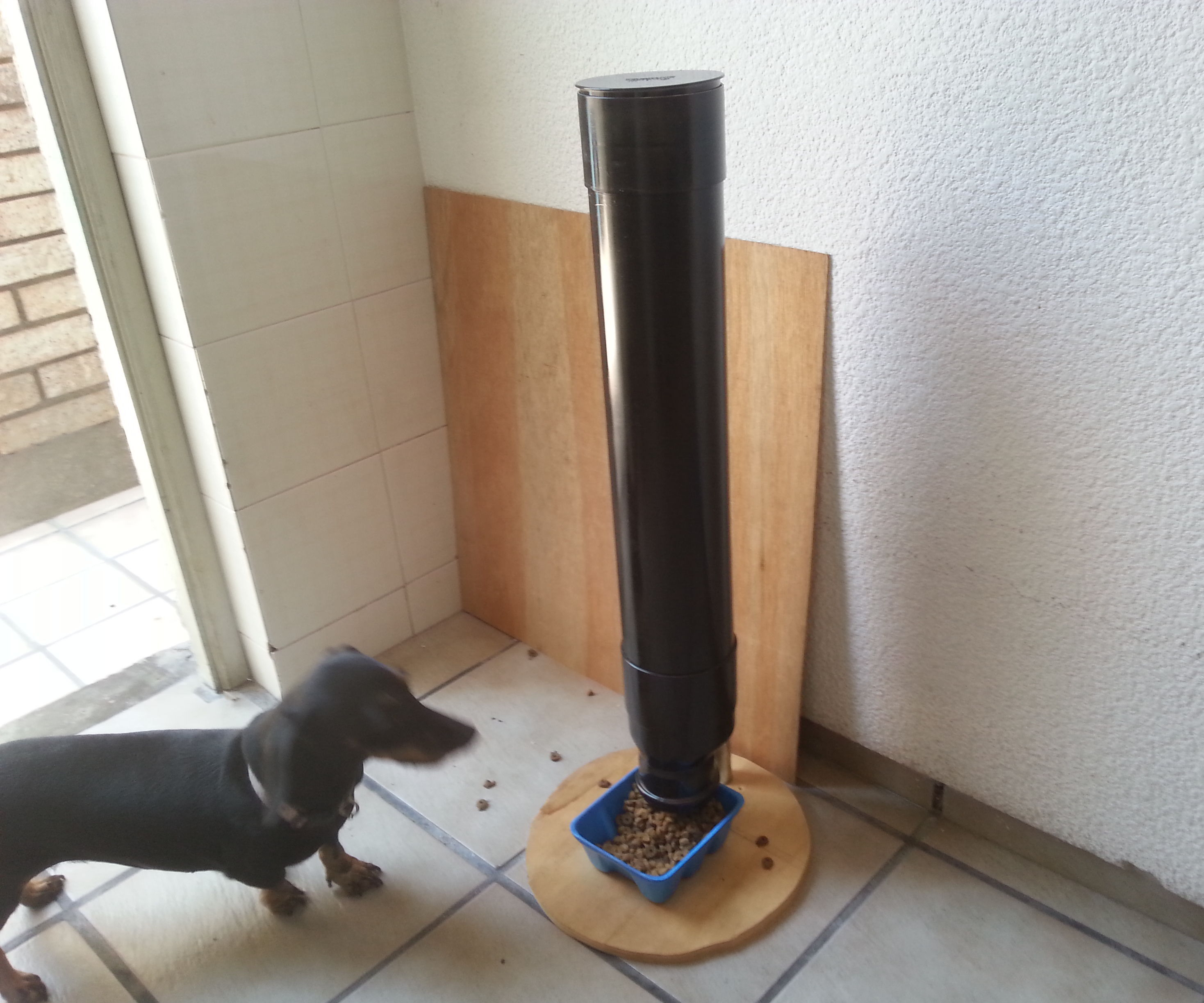 Auto Pet Feeder 4 Steps Instructables