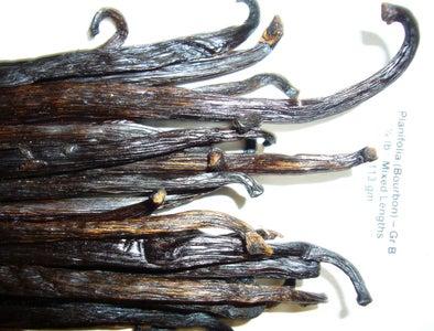 Review: the Organic Vanilla Bean Company