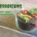 TERRORiums: Creepy Crawly Terrariums