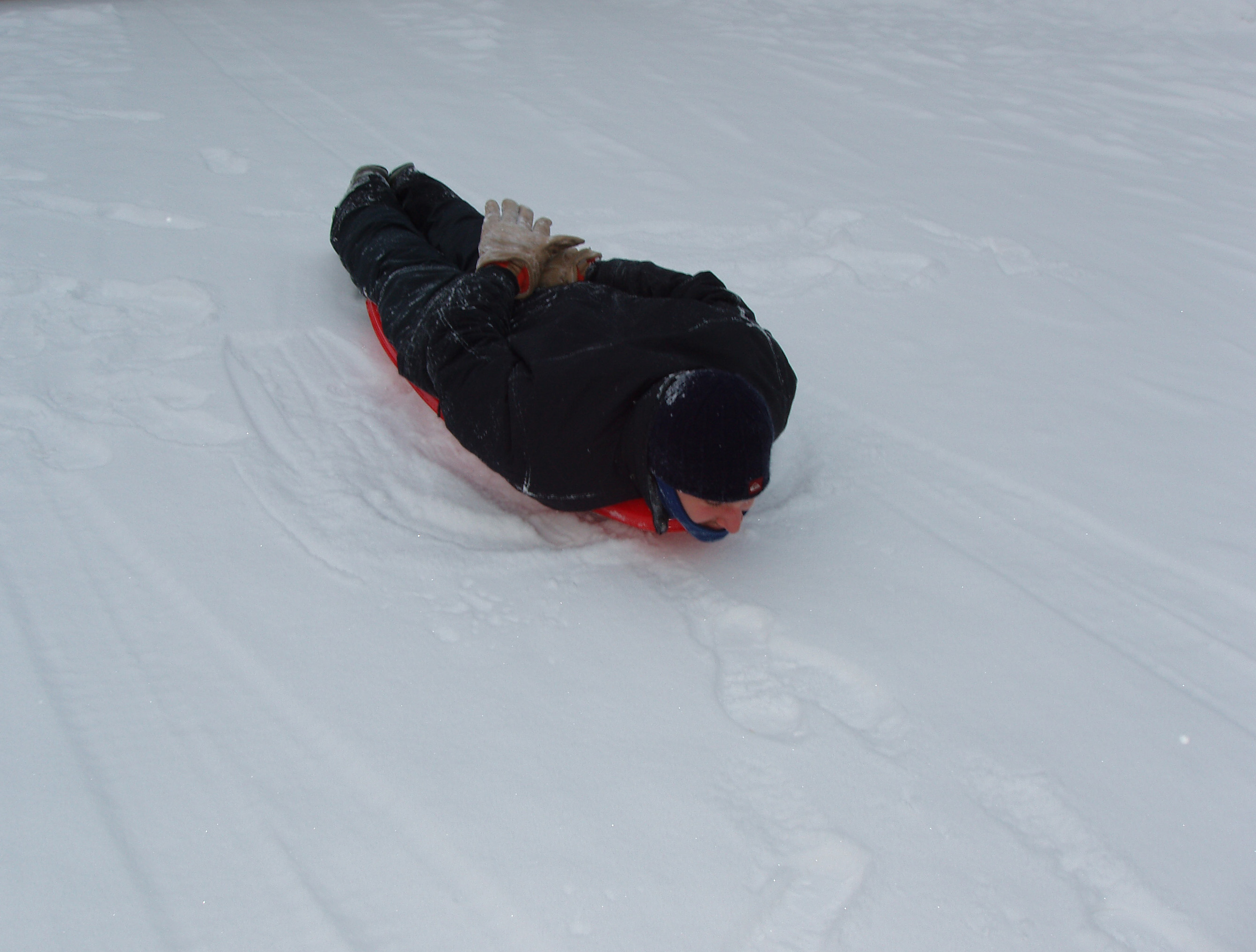 The Art of Sledding
