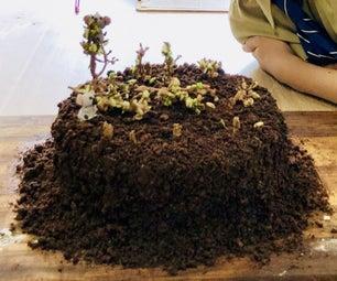 Deforestation Cake