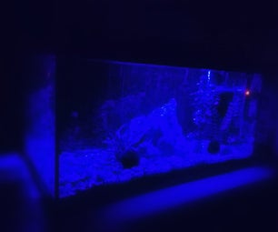 Simple and Cheap Aquarium Moonlight