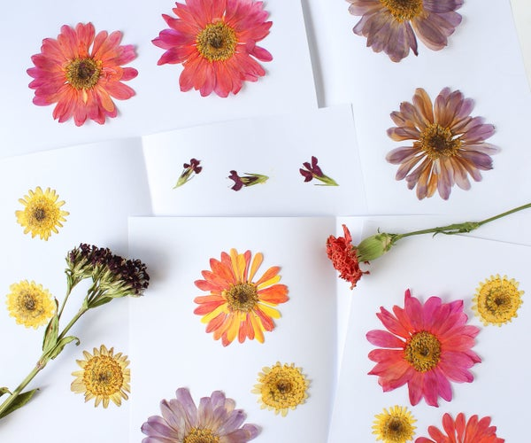 How to Press and Dry Flowers (and Leaves!)