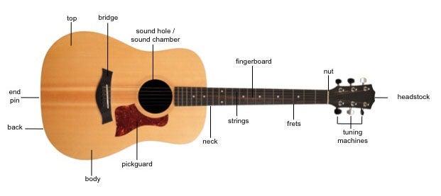 Parts of a Guitar.
