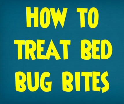 How to Treat Bed Bug Bites | Treating Bites From Bugs and Insects
