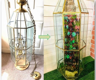 Repurposed Glass Chandelier Into Live Moss Drip Wall and Faux Terrarium