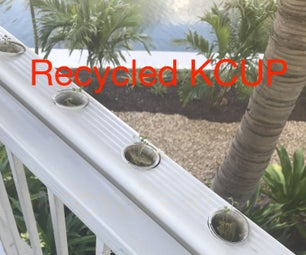 Balcony Recycled Hydroponic Garden
