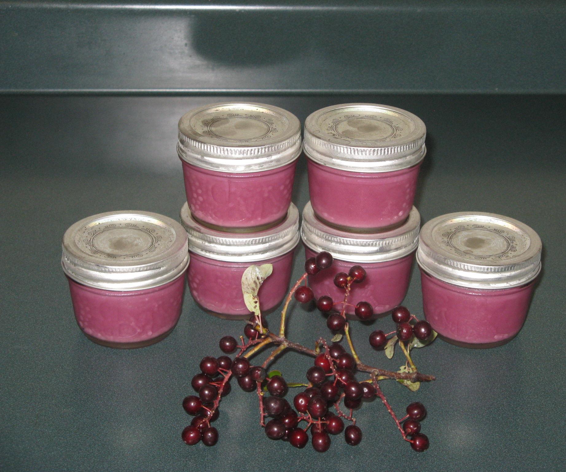 Sugar Free Chokecherry Jam