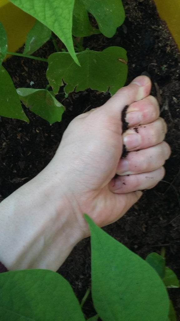 Getting & Restoring Soil