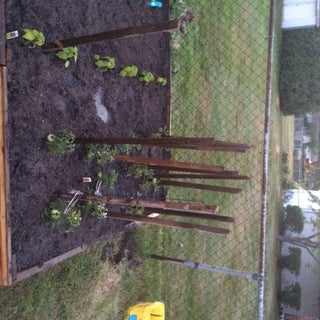 new raised garden bed with fill dirt 3 of 5.JPG