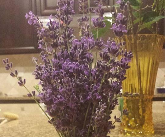 DIY Coconut Lavender Body Scrub & How to Dry Lavender.