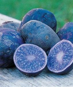 How to Make Blue Mashed Potatoes