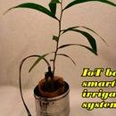 IoT Based Smart Irrigation System Using Soil Moisture Sensor and ESP8266 NodeMCU