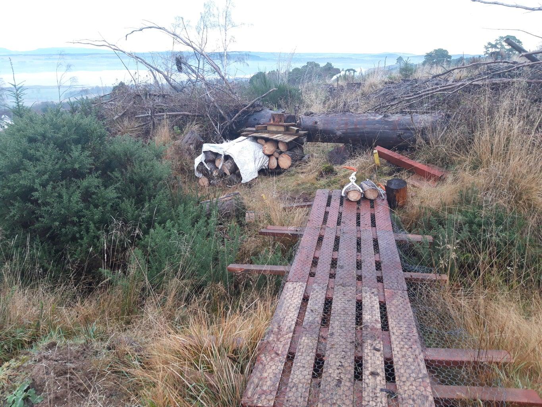 Bridge Still Sturdy & Strong
