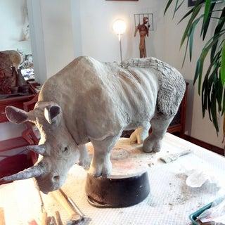 Rhonda the Rhino