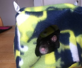 Rat Hammock Series: Cube