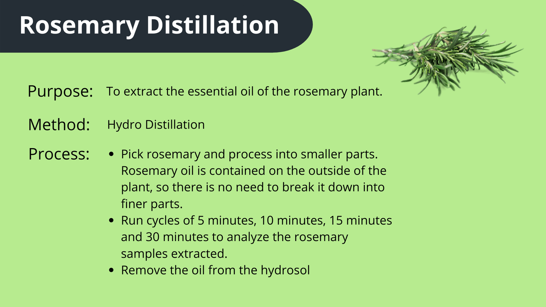 Extracting Rosemary With Hydro-Distillation
