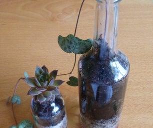 Drug Bottle Planter