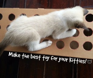 Make a Toy for Your Cat Using Cardboard