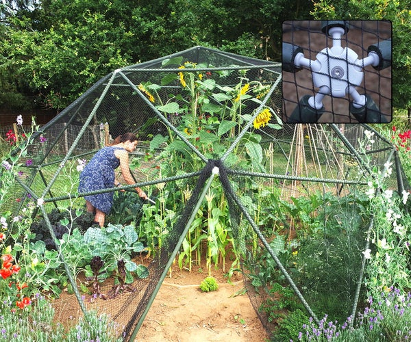 Build a Geodesic Dome Fruit Cage With Hubs