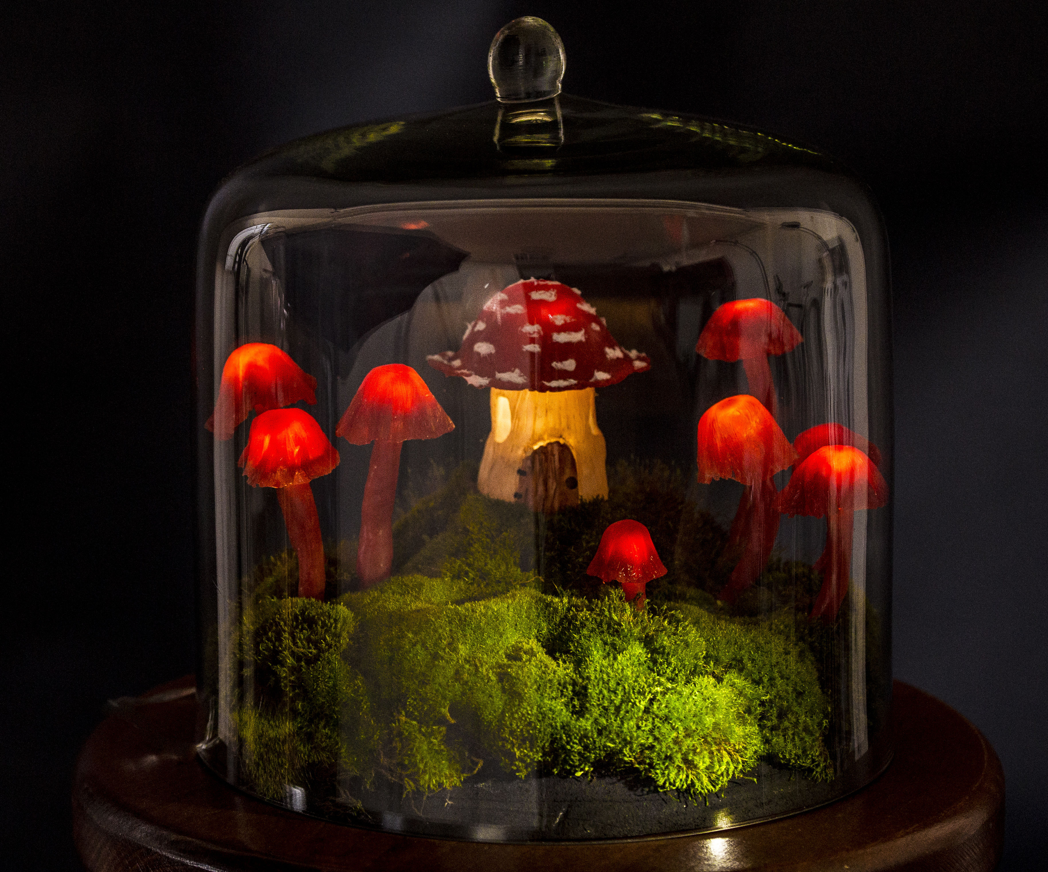 Miniature Fairy Garden Terrarium Enchanted Mushroom Lights 4 Steps With Pictures Instructables