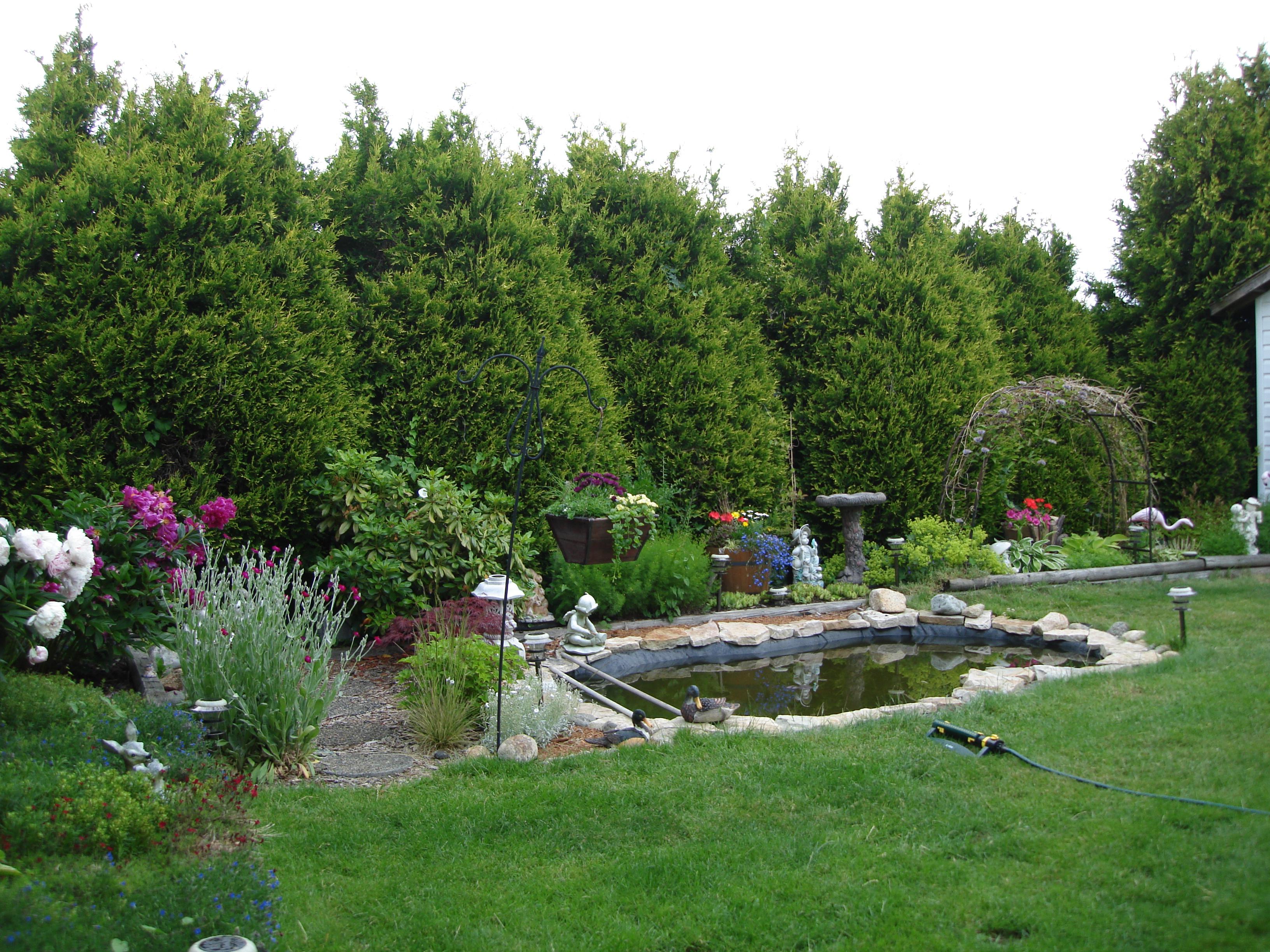 How to Garden! Basics