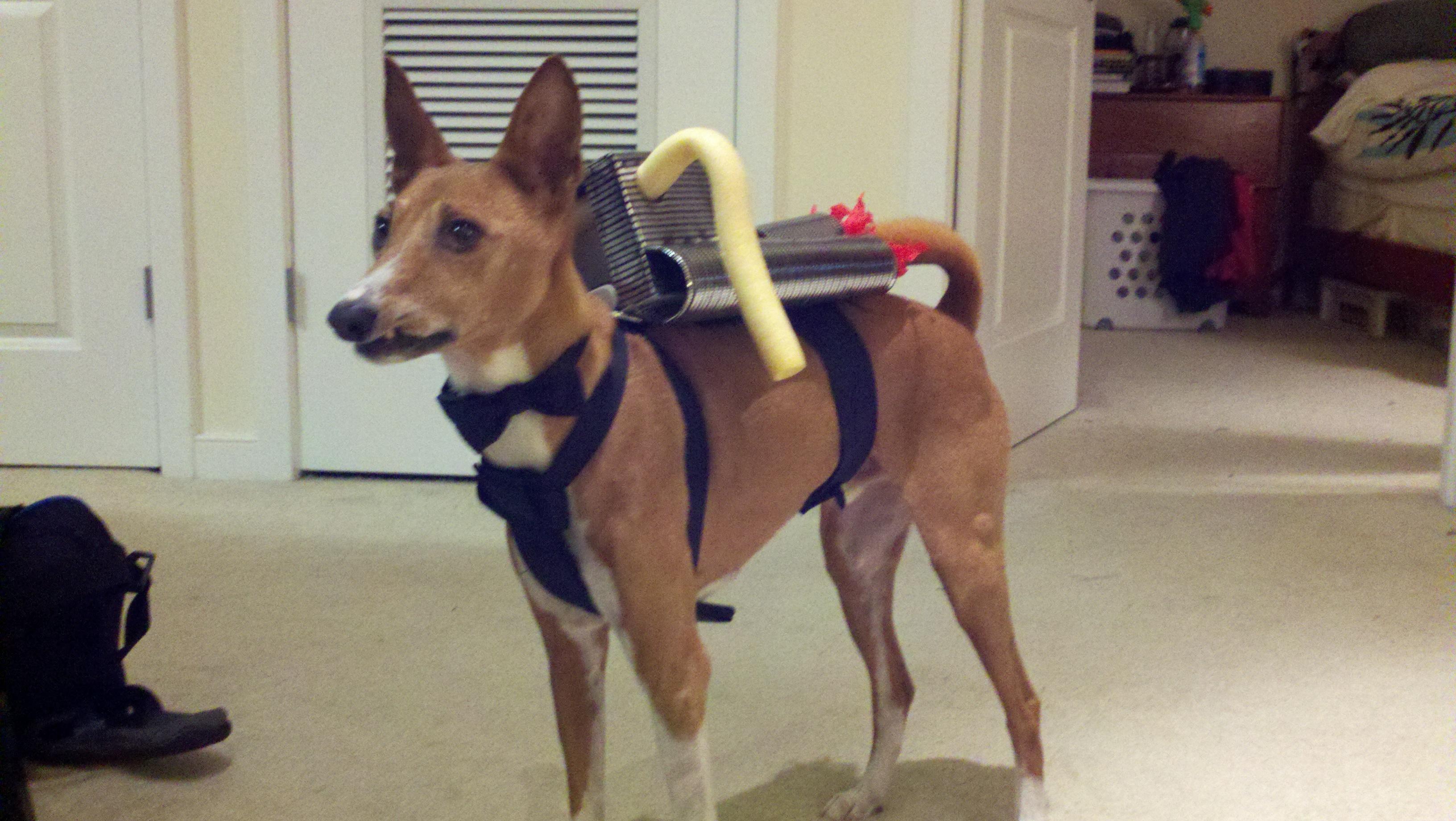 James Bond Dog Costume