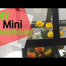 Gorgeous Terrarium From Cheap Picture Frames