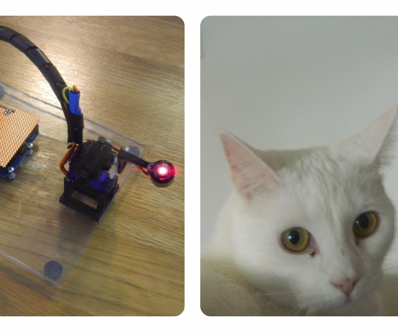 Cat Laser Entertainer Robot