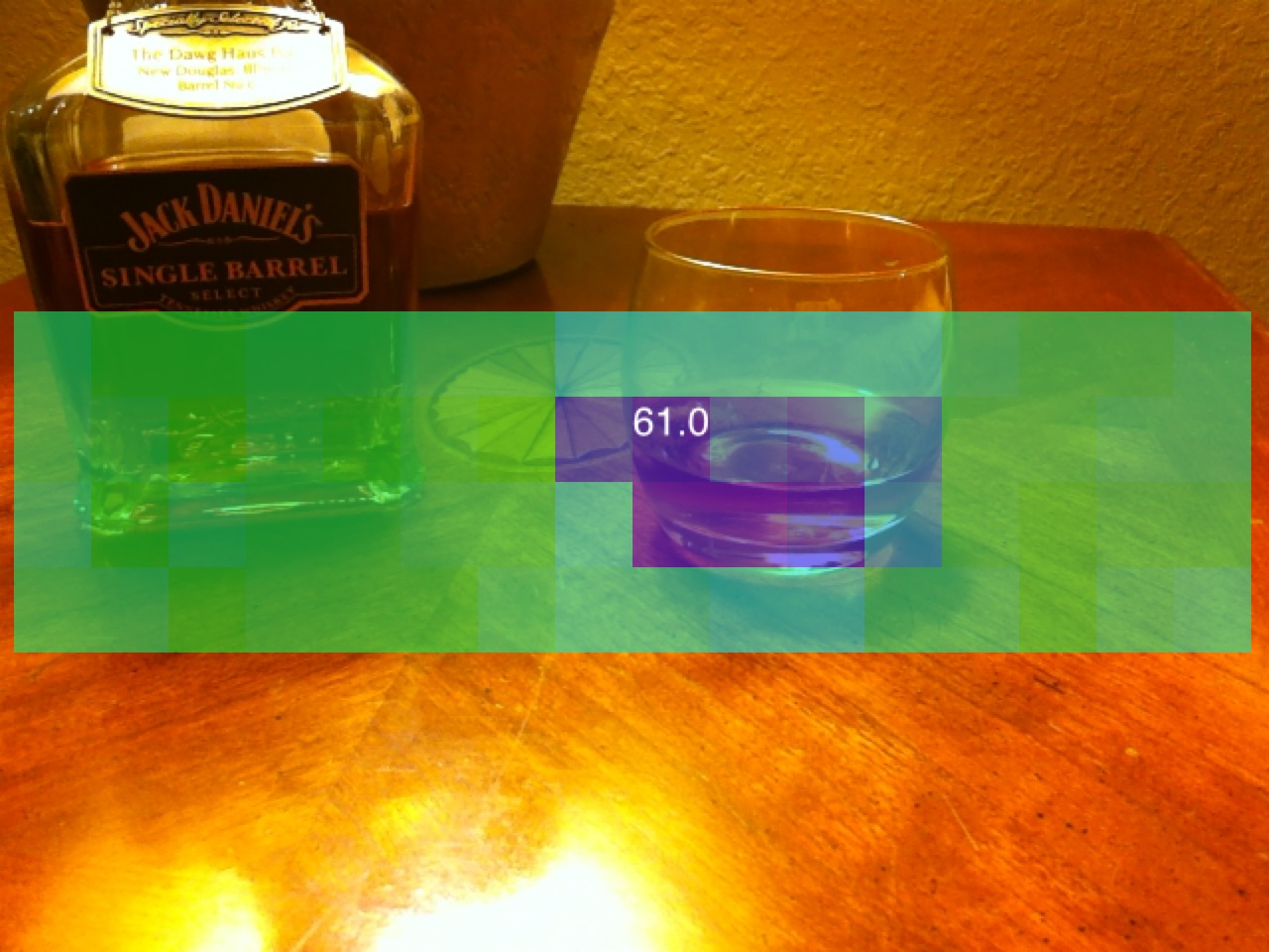 Thermal Imaging Phone Camera
