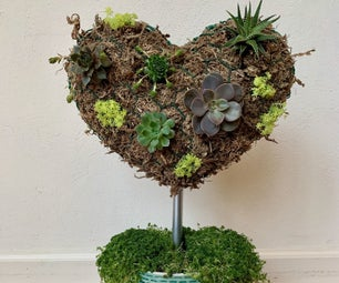 Living Heart Succulent Planter