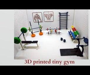 3d Printed Tiny Gym
