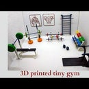 3d Printed Tiny Gym