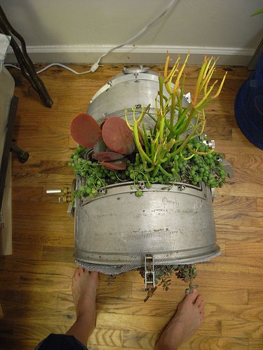 Make a Planter Out of Random Science Junk