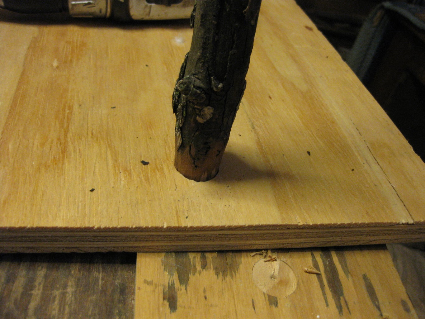 Trim Your Branch, Remove Bark and Fit to the Hole