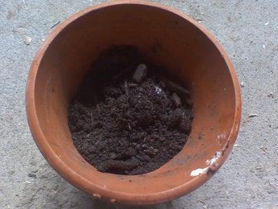 Adding More Compost