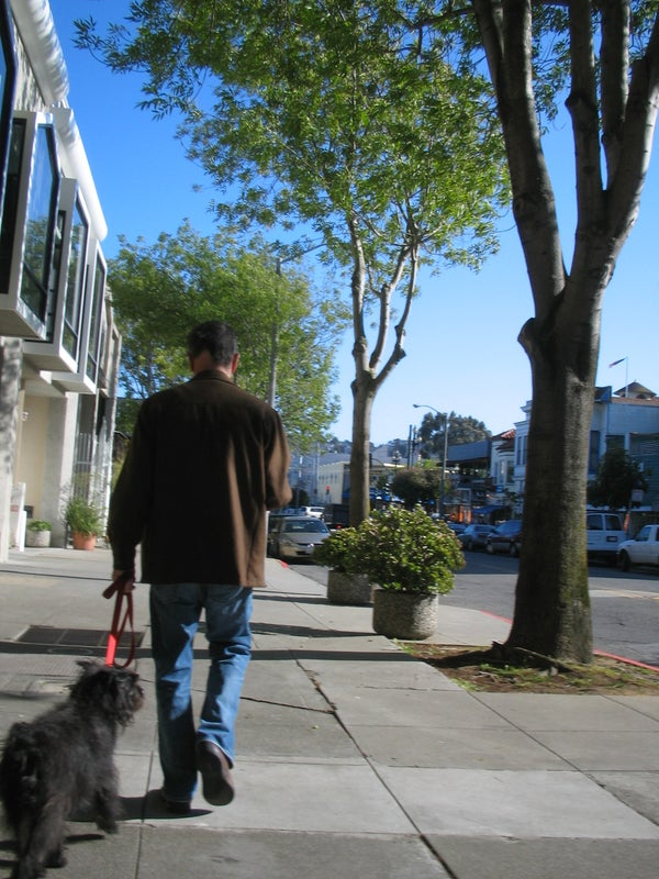 How to Be a Good Dog-Owner in San Francisco